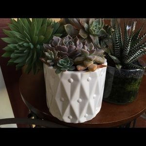 NEW White beautiful pot for succulents-no offers